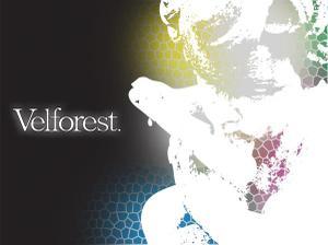 Velforest